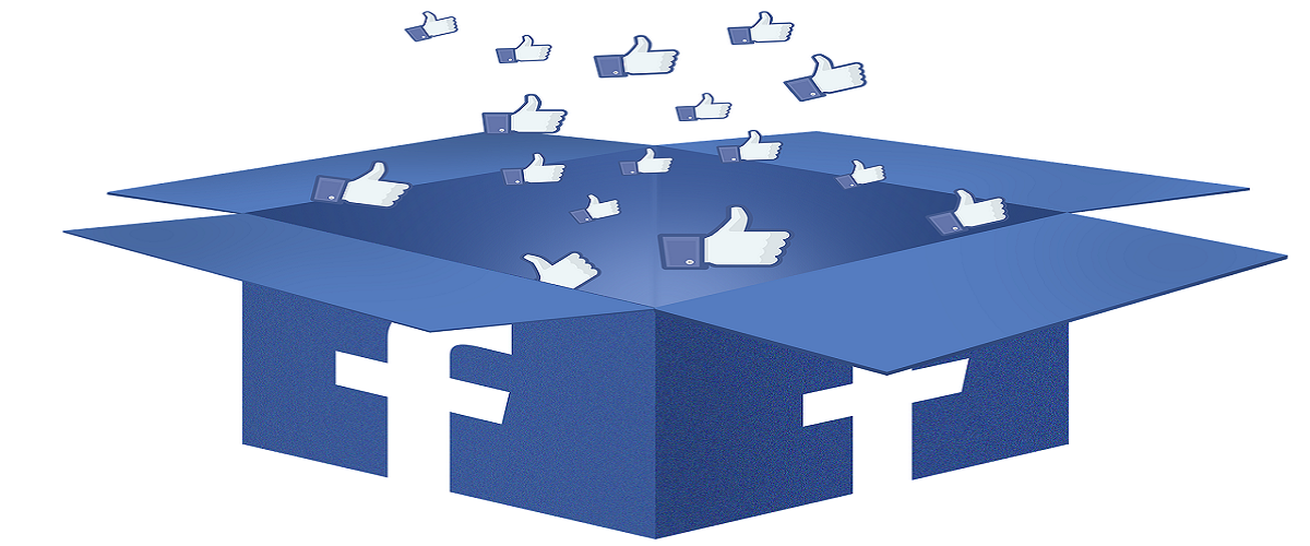 facebook-box.png